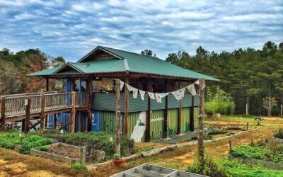 WCHL: Honeysuckle Teahouse and Cafe